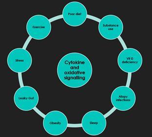 Cytokine and oxidative stress (Copy)