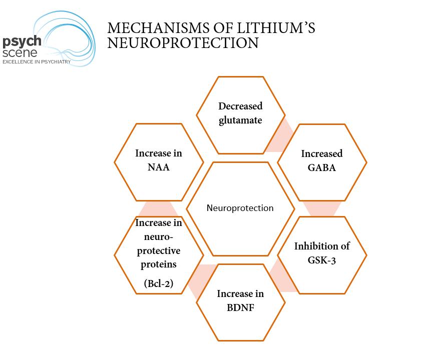 Lithium neuroprotection