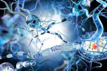 Neuropsychiatry of Multiple Sclerosis (2)