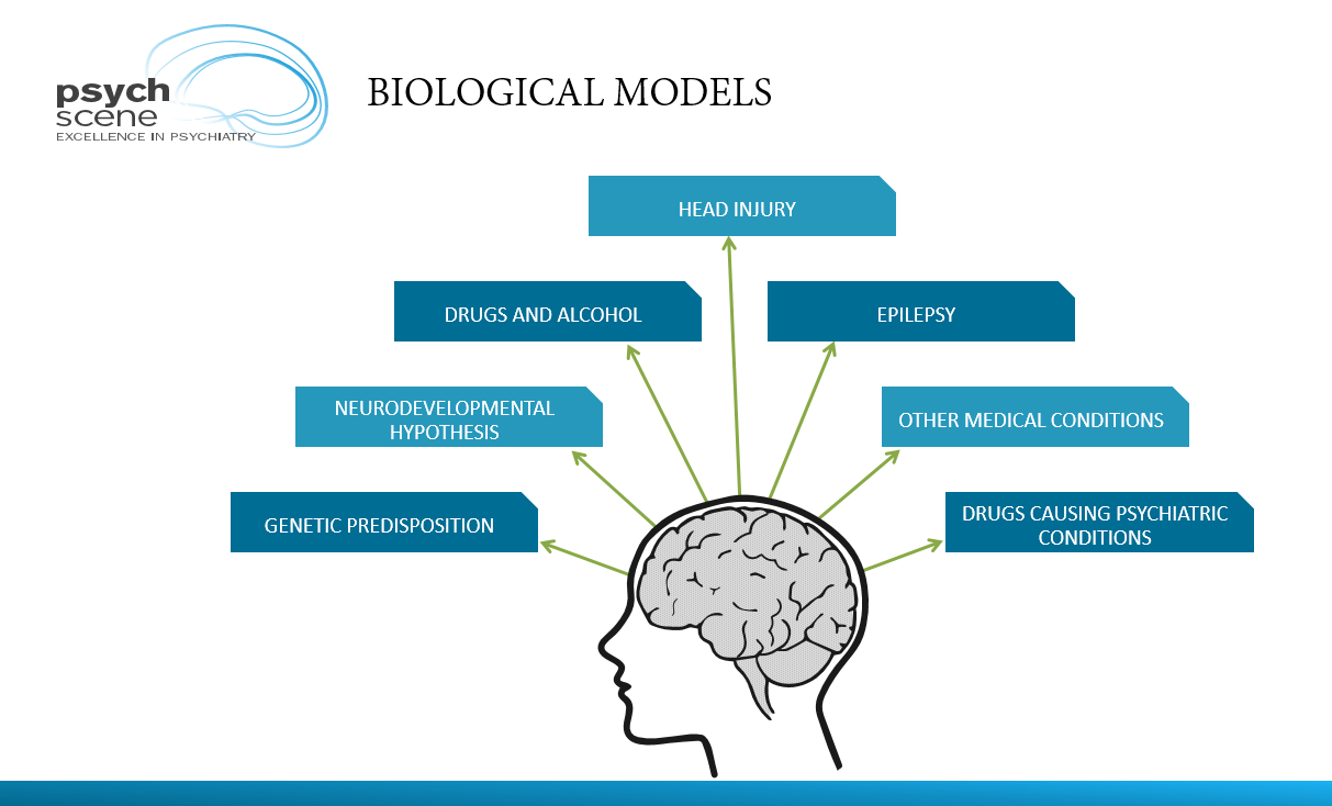Biological Formulation Models