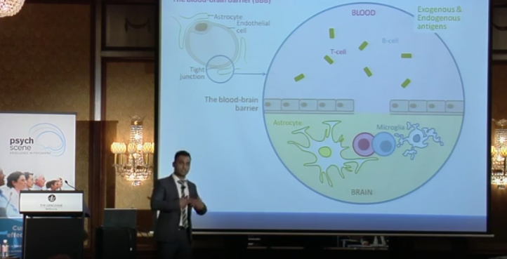 Neuroinflammation Simplified – The Link between the Immune System and The Brain