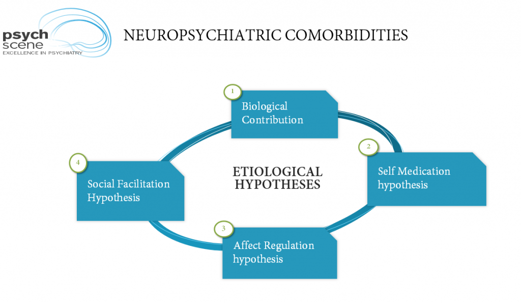 etiological hypotheses for alcohol neuropsychiatric comorbidities