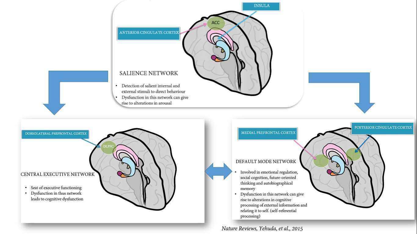 Integrative model of PTSD