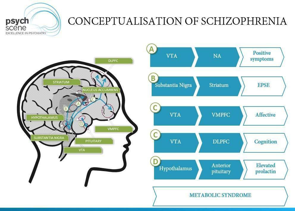 understanding the term of psychosis based on the example of schizophrenia Schizophrenia and other psychotic disorders  examples of positive  current understanding of the causes of schizophrenia is based on knowledge of abnormal.