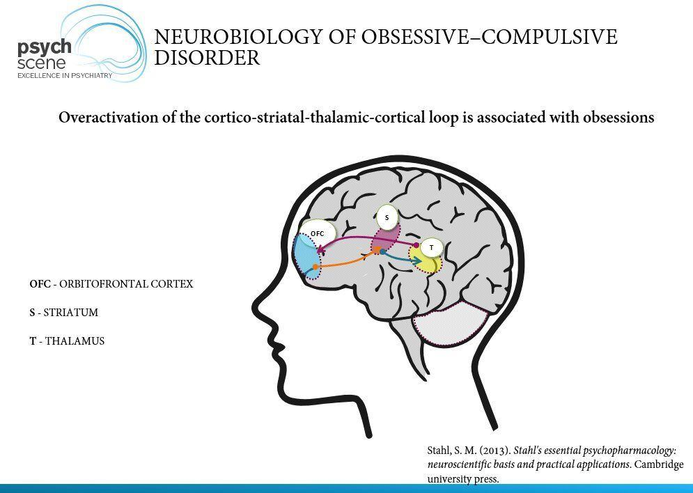 Obsessive Compulsive Disorder - A Primer on Neurobiology and
