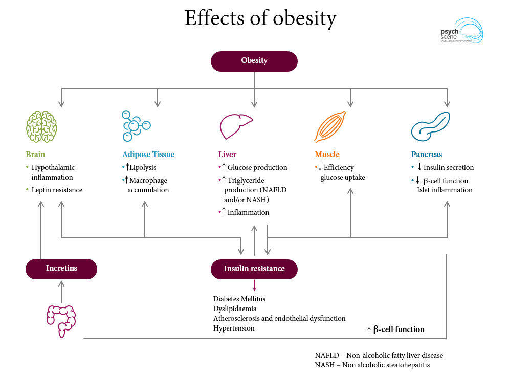 Understanding And Managing Weight Gain And Obesity In Mental Health