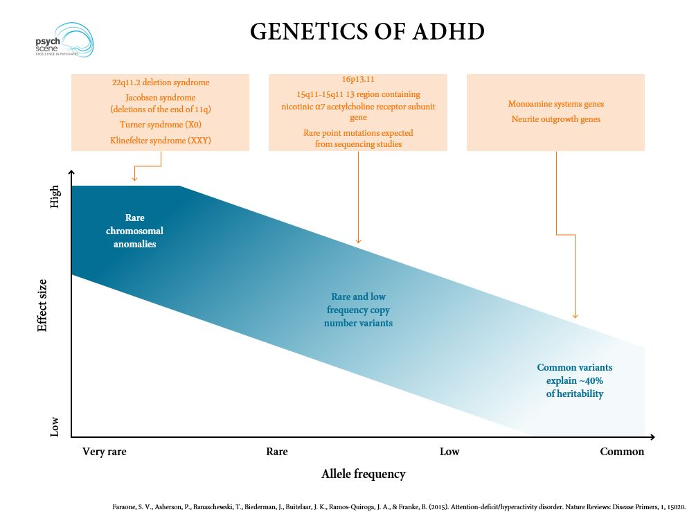 First Genetic Map Of Attention Deficit >> Diagnosis And Management Of Adhd Focus On Adult Adhd