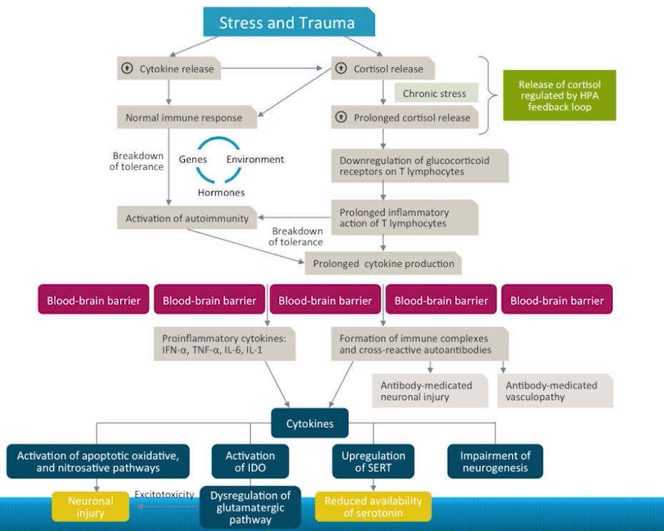Pathogenesis & Diagnostic Indicators for APS in Psychiatry